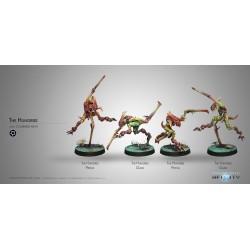 Figurine Infinity (Corvus Belli) - amés - Gakis et Pretas