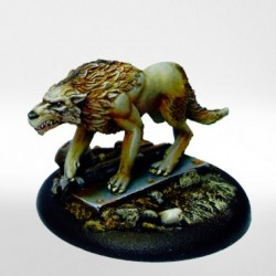 Eden - Loup Noir