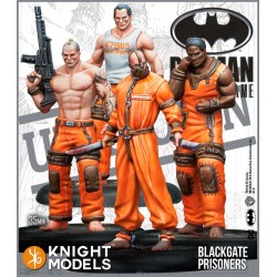 Batman - Blackgate Prisoners Set