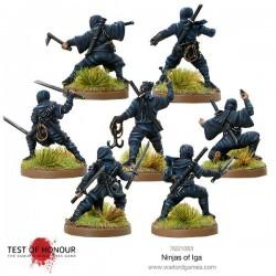 Test of Honor - Ninjas of Iga