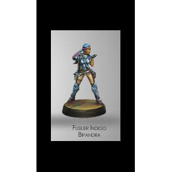 Infinity - Fusilier Indigo Bipandra