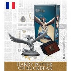 Harry Potter - Lui même sur Buck (FR)